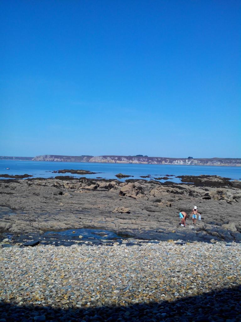 Grande marée, pêche à pieds